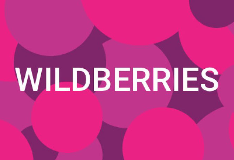 Wildberries, в чем подвох? Выводы по итогам анализа Вайлдберриз.